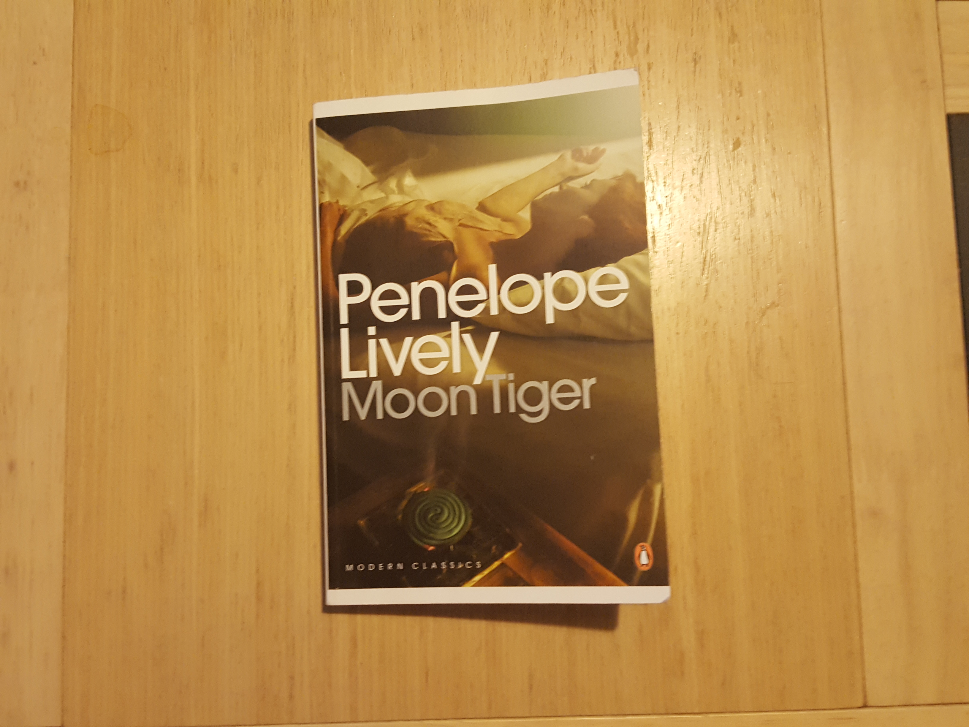 Holiday Books- Moon Tiger by Penelope Lively
